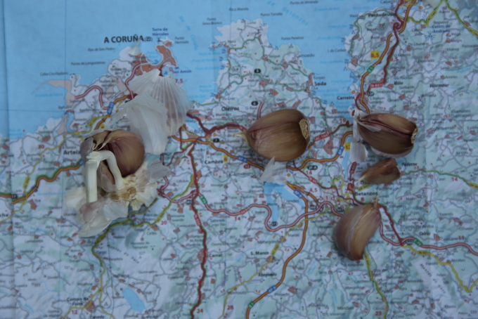 EAT MORE GARLIC AND KEEP MAP-READING